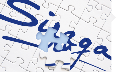 image of a puzzle with Siraga logo
